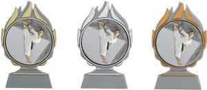Pokal Karate A168