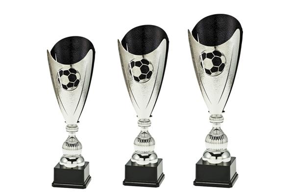 Fußball Pokal P1611