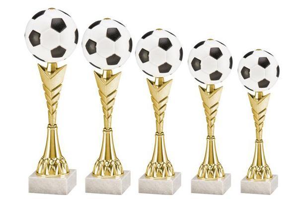 Fußball Pokal 7110