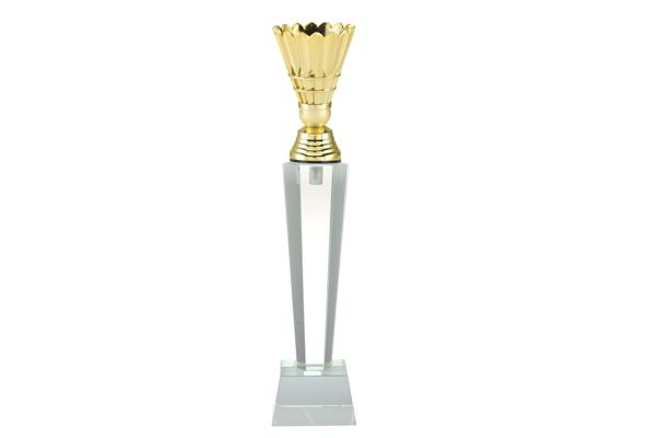 Pokal Badminton ST.181