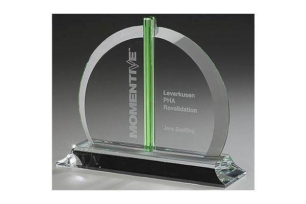 Bellingham Award 79502
